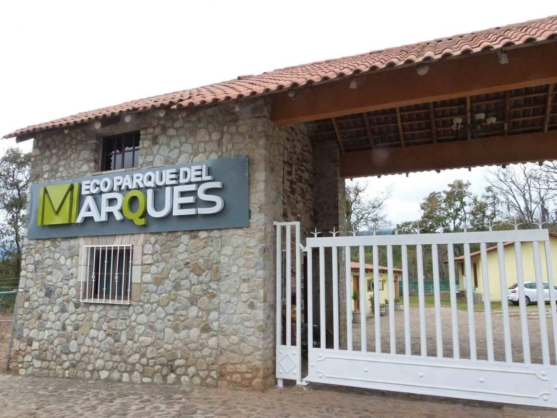 Marques-12.jpg